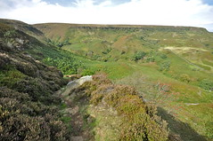 Well its going down steeply now, & i've a long way to go the other way (petefreeman75) Tags: georgegapcauseway trod path pannierway nikond90 northyorkshire northyorkmoors northyorkmoorsnationalpark moors heather