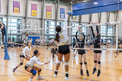 IMG_3459 (atsung168) Tags: volleyball ubc mizuno tournament north burnaby secondary school canon eos r