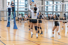 IMG_3438 (atsung168) Tags: volleyball ubc mizuno tournament north burnaby secondary school canon eos r