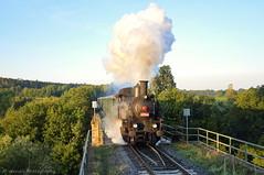 423.009 (InflexibleCZ) Tags: train railroad novéměstonadmetují d3300 nikon morning historical sunshine