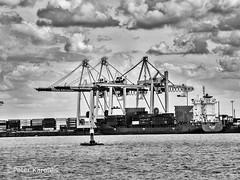 Hamburg - man on a buoy (peterkaroblis) Tags: hamburg stephanbalkenhol schwarzweis blackandwhite figur sculpture hafen harbour elbe wasser water wolken clouds