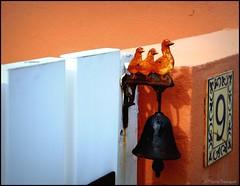 Cloche au portillon du numéro 9 de la rue (bleumarie) Tags: coucherdesoleil leverdesoleil littoralméditerranéen mariebousquet mididelafrance printemps2019 saintemarielamer soleilcouchant soleillevant suddelafrance vacancesàlamer vacances2019 vacanceshorssaison 2019 bleumarie côte catalogne couchant france fuji horssaison levant littoral méditerranée méridional mer midi occitanie printemps pyrénéesorientales roussillon saintemarie soleil sud vacances
