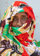Eritrean woman with a veil and nose ring, Semien-Keih-Bahri, Keren, Eritrea (Eric Lafforgue) Tags: adornment adults africa african africanethnicity bilen charen cheren colourpicture day eastafrica eritrea eritrea190032 eritrean ethnic face headandshoulder headandshoulders headshot headscarf hornofafrica keren lookingatcamera nosepiercing nosering oneperson onewomanonly outdoors photography portrait realpeople traditionalclothing traditionaljewelry vertical women semienkeihbahri