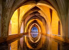 Badehaus (orangefield-images) Tags: bad gewölbe keller bögen sevilla andalusien realalcazar königspalast gold licht perspektive fluchtpunkt wasser badehaus ruhe stille alt historisch