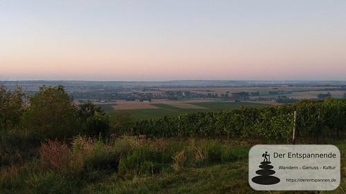 Blick über das Selztal nach Süden