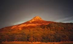 Gorgeous evening light at Roseberry topping. (Darren Speak) Tags: evening bathed sunshine hill teeside roseberrytopping