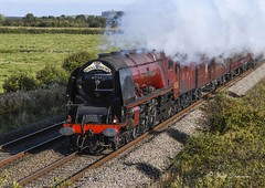Duchess of Sutherland in Somerset (maddiver58) Tags: steam engine lms pacific duchess sutherland no 6233 somerset