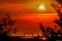 Perspective (M@rtha Decker) Tags: duluth minnesota minn mn canal park aerial lift bridge harbor ship shipping sun sunrise dawn daybreak orange sky seagull gull boundary avenue thompson hill rest area mndot overlook lake superior pentax ks2 dslr tamron 18200mm zoom lens marthadecker onlyinmn upnorth northshore flickriver justpentax