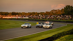 The Kinrara Trophy (Gary8444) Tags: revival 2019 motorsport historic september goodwood