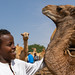 Somali boy in the camel market, Woqooyi Galbeed region, Hargeisa, Somaliland
