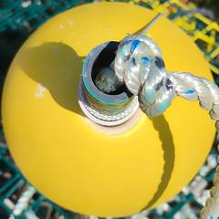 Trap Buoy (Timothy Valentine) Tags: large buoyant 0919 2019 yellow squaredcircle northfalmouth massachusetts unitedstatesofamerica
