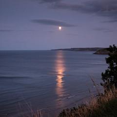 Moonlight 2 (Hector Patrick) Tags: capture1 flickrelite fujifilmxh1 fujinonxf23f14r northyorkshire
