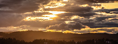 Sunset in Nordmarka (Thor Edvardsen) Tags: summer sunset sun solnedgang trees skies canon canon5dsr ef70200mmf28lisiiusm oslo norway norge nature scenery