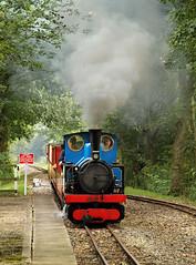 Hawk At Cuckoo's Nest Halt. (Neil Harvey 156) Tags: steam steamloco steamengine steamrailway railway hawk cuckoosnesthalt kirkleeslightrailway estatesrailwaygala miniaturerailway kitsonmeyer