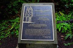 Lady Bird Johnson Grove, Redwood National Park, CA (SomePhotosTakenByMe) Tags: sign schild ladybirdjohnsongrove hike trail wanderung california usa america amerika unitedstates outdoor redwoodnationalpark nationalpark redwood