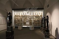 Palatino_Museo Palatino_19