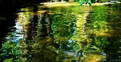 ~~ Comme un tableau abstrait ~~ (Joélisa) Tags: aût2019 ru ruisseau reflets verts