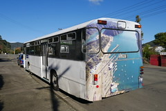 1982 MAN SL200 #1634 (CR1 Ford LTD) Tags: buses bus manbuses man mansl mansl200 sl200 germanbuses germanomnibus omnibus newzealandbuses aucklandbuses newzealand auckland ara aucklandregionalauthority aramansl200 theyellowbuscompany 1634 urbanbuses 1980s oldschool 1980sauckland 80s busdriver thegoodolddays german aucklandregionalauthoritymansl200 hawkecoachbuilders hawke hawkenewzealand hawkebuses hawkenz hawkecoachbuilding hellalamps hella hellanz hellanewzealand hellataillamps taillamps taillamp