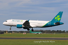 A320 EI-DVL AER LINGUS (shanairpic) Tags: jetairliner aerlingus newcolours dublin a320 airbusa320 eidvl