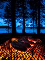 Makkarat ritilällä nuotiolla (VisitLakeland) Tags: finland lakeland autumn campfire forest järvi lake luonto maisema makkara metsä nature night nuotio outdoor sausage scenery syksy yö