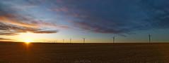 Lever du soleil sur les éoliennes (Glc PHOTOs) Tags: glc1373 lever de soleil sunrise nilkon d850 irix 15mm blackstone