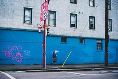 global climate strike (bluechameleon) Tags: sharonwish building chinatown colour grafitti rain sharonwishphotography street umbrella vancouver wall windows woman streetphotography ngc