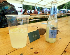 Wirral Gin & Tonic at Wirral Food & Drink Festival 2019 (Tony Worrall) Tags: wirral food drink festival 2019 wirralfooddrinkfestival2019 nw northwest north update place location uk england visit area attraction open stream tour country item greatbritain britain english british gb capture buy stock sell sale outside outdoors caught photo shoot shot picture captured ilobsterit instragram event show annual birkenhead ginandtonic glass bottle gin spirit bar pub stall table