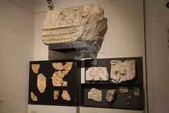 Palatino_Museo Palatino_36