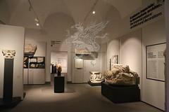 Palatino_Museo Palatino_33