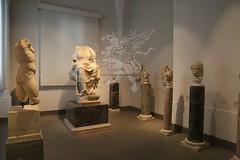 Palatino_Museo Palatino_17