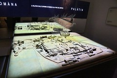 Palatino_Museo Palatino_15