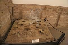 Palatino_Museo Palatino_01