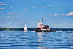 Tug boat in City Island, New York (Cordia Loretta) Tags: stripedbassday bridge throgsneckbridge bronx newyork water wake longislandsound sea ripple wave clouds cloudy blueskies cityisland tugboat tug sailboat sail
