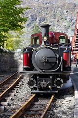 IMG_9351  Double Fairlie Loco on The Ffestiniog Railway (Beth Hartle Photographs2013) Tags: northwales ffestiniog railway steamrailway narrowguage doublefairlie blaenauffsetiniog