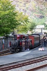 IMG_9347  Double Fairlie Loco on The Ffestiniog Railway (Beth Hartle Photographs2013) Tags: northwales ffestiniog railway steamrailway narrowguage doublefairlie blaenauffsetiniog