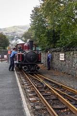 IMG_9334  Double Fairlie Loco on The Ffestiniog Railway (Beth Hartle Photographs2013) Tags: northwales ffestiniog railway steamrailway narrowguage doublefairlie blaenauffsetiniog