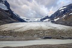 Scenic Athabasca Glacier (My Americana) Tags: athabasca glacier jasper nationalpark alberta canada icefield canadianrockies scenic landscape