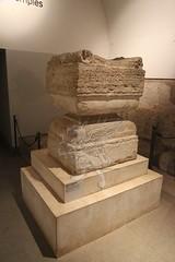 Palatino_Museo Palatino_14