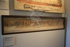 Palatino_Museo Palatino_28