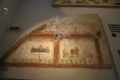 Palatino_Museo Palatino_27
