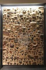 Palatino_Museo Palatino_03