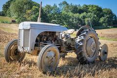 Old Grey Fergy (Jez22) Tags: jeremysage old grey fergy massey ferguson tractor vintage field kent uk photograph copyright
