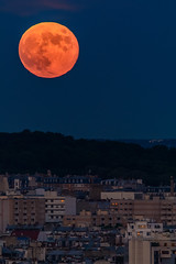 Fly me to the moon (aurlien.leroch) Tags: moon paris france sigma 600mm lune night cityscape nikon d7100
