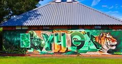 2019 Cheltenham Paint Festival (BobFrancis426) Tags: paintings graffiti cheltenham festival artists art