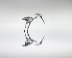 P a t i e n c e (Phil Durkin CPAGB BPE3) Tags: bolton entwistlereservoir heron sculpture surreal uk art cloud fineart longexposure nopeople reflection serenity stillness tranquil water