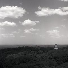 (Cédric Z) Tags: guatemala cental america hasselblad bw medium format film landscape tikal pyramid