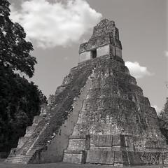 (Cédric Z) Tags: guatemala cental america hasselblad bw medium format film tikal pyramid