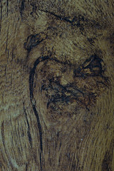Evil Pirate Face (steve_whitmarsh) Tags: macro closeup wood art abstract pareidolia macromondays topic