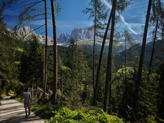 hiking trail beneath Rosengarten group (paddy_bb) Tags: olympusomd paddybb mft microfourthirds wwwpatblogde 2019 outdoors landscape licht dolomites rosengartenmassiv italien alps dolomiten bw alpen italy hiking italia alpine altoadige südtirol
