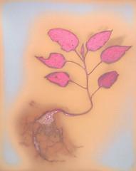 Lumen Print 1902 Weed Seedling by John Fobes: copyrighted all rights reserved (john_fobes) Tags: lumen lumenart lumenprint lumenprinting llumenprints photogram plant botanical johnfobes fscrcenlargingpaper copyrightedallrightsreserved
